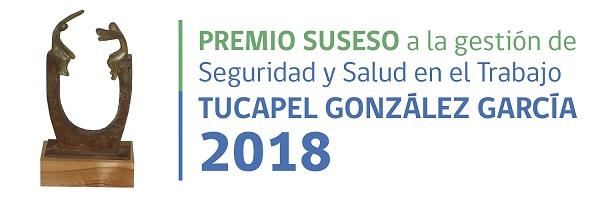 """Premio a la Gestión de Seguridad y Salud en el Trabajo """"Tucapel González García"""" 2018"""