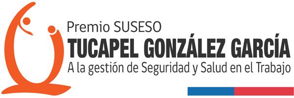 """Premio a la Gestión de Seguridad y Salud en el Trabajo """"Tucapel González García"""" 2019"""