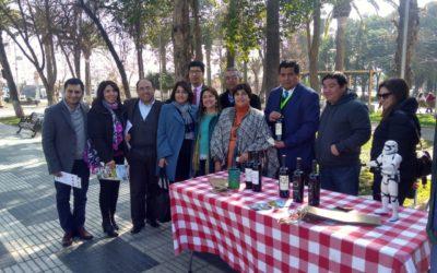 IST participa en seminario sobre migración y trabajo infantil
