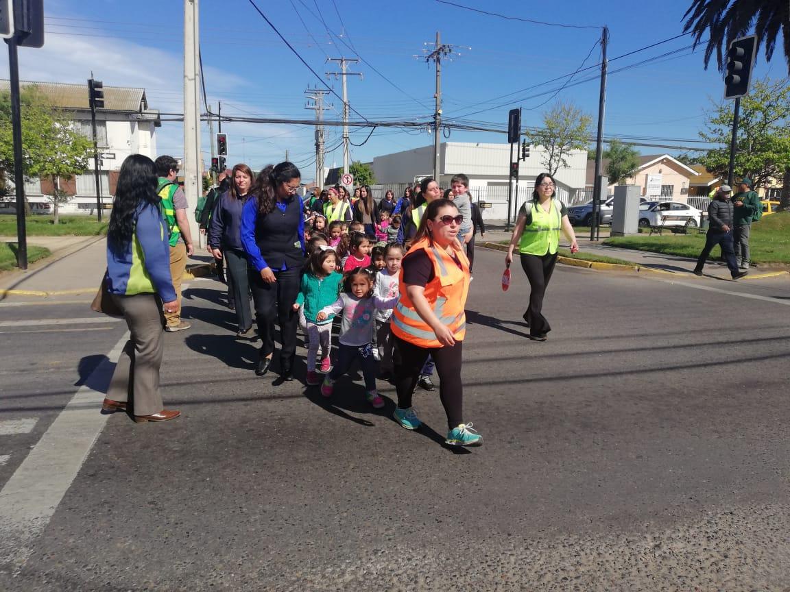 simulacro_tsunami_IST_San Antonio (6)